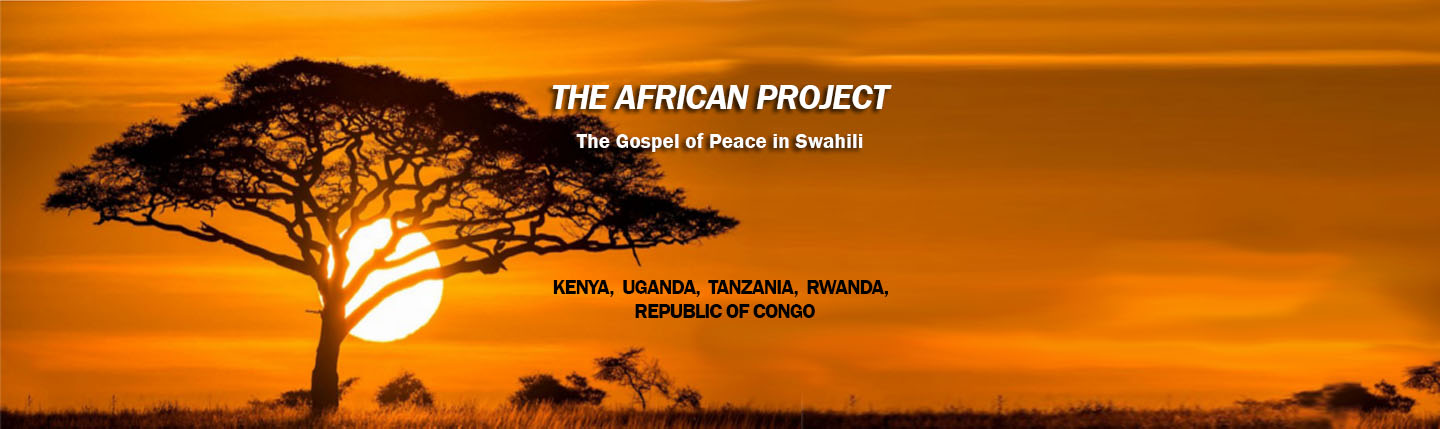 The African Project